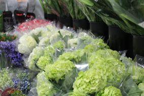 Fort Lauderdale Flower Market