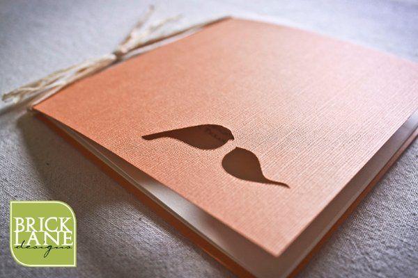 BirdProgram3