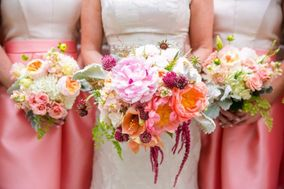 Tiger Lily Weddings