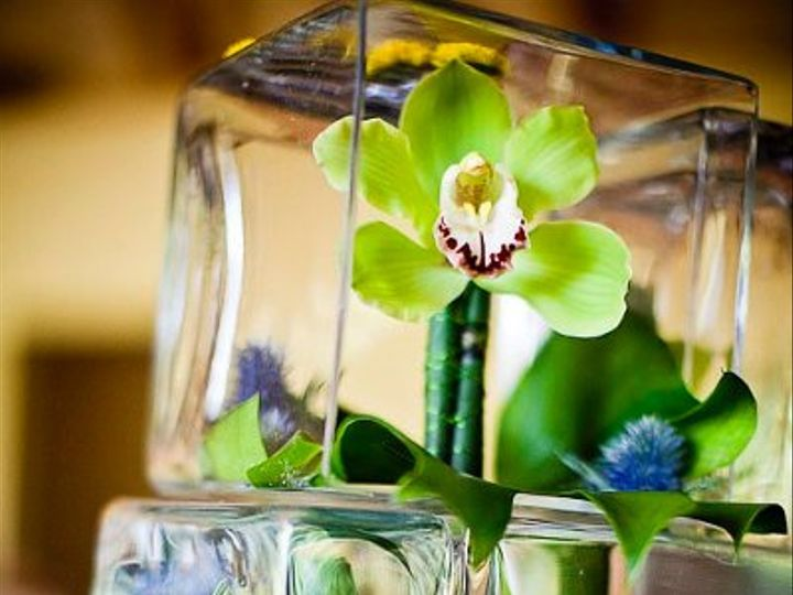 Tmx 1328311315227 Stack Middletown wedding florist