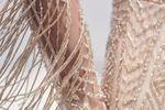 Maggie Sottero Designs image