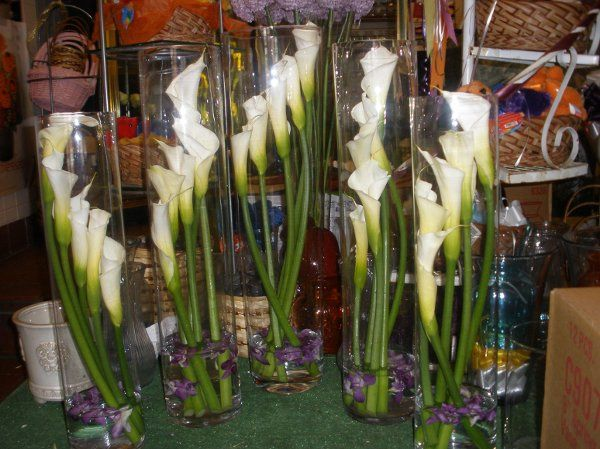 Cala lilies in a silinder vase