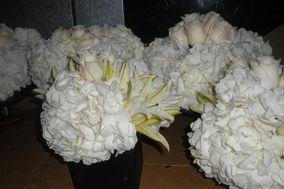 Almaz flowers