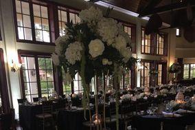 Exquisite Weddings Rental & Services