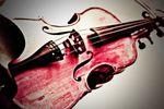 Stillwater String Quartet image