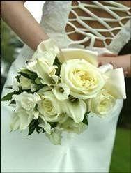 Tmx 1243759855843 Picture15 Belmont wedding eventproduction