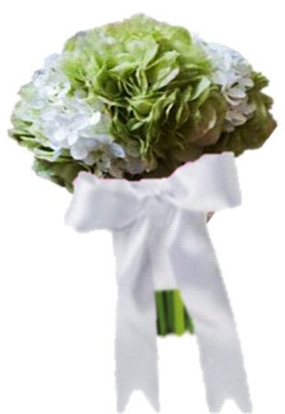 Tmx 1369325343162 Cl Hyd2c Belmont wedding eventproduction