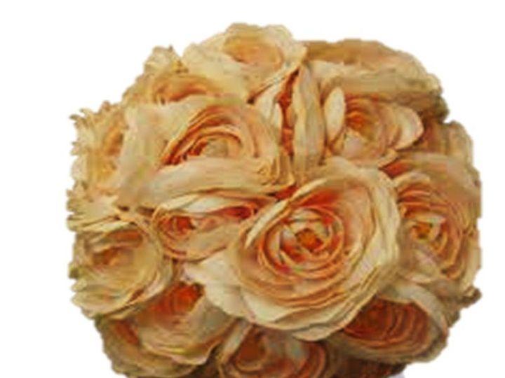 Tmx 1369325360089 Cl Ran S Belmont wedding eventproduction