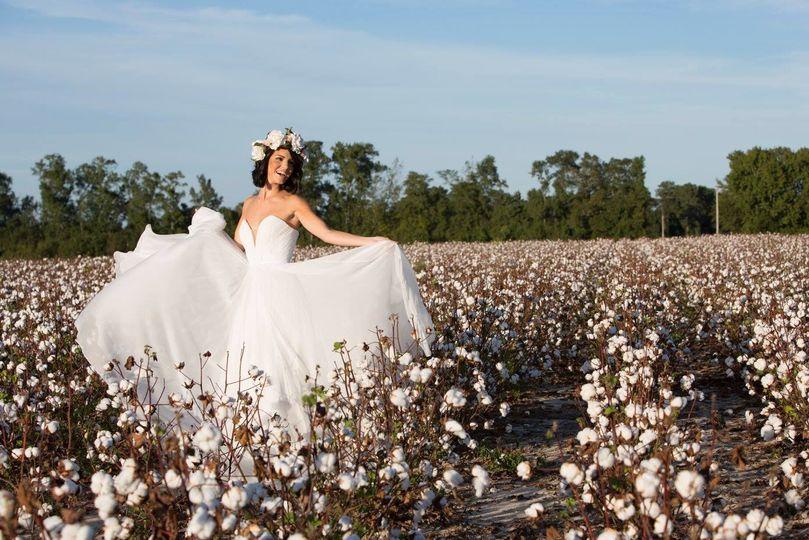 Cotton Field shoot.
