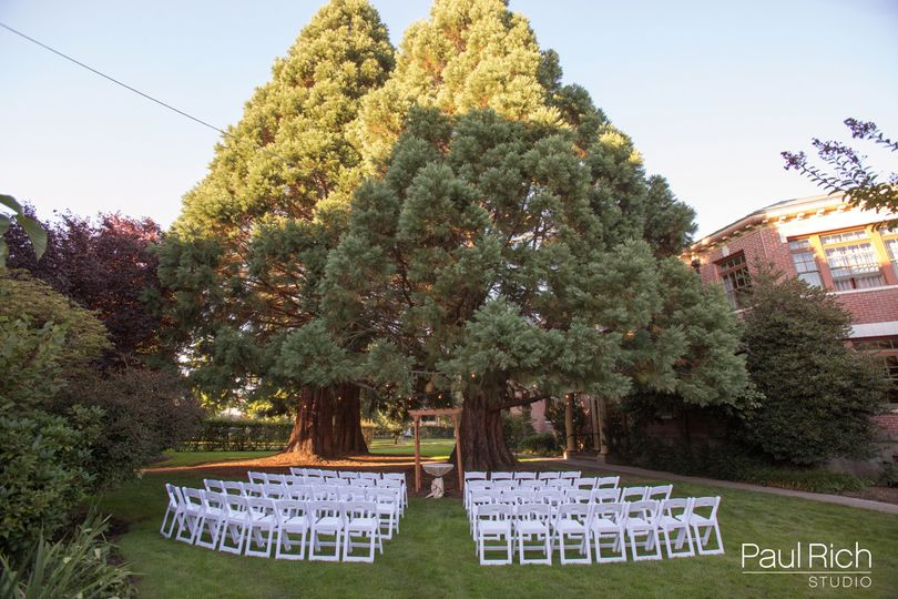 Ceremony in the Cedar Grove