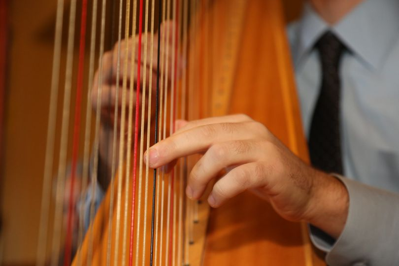 Harp strings - Stephan Haluska Harp