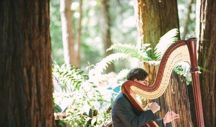 Stephan Haluska Harp