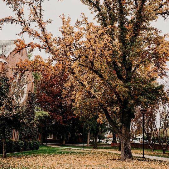 Morris Chapel in the Fall