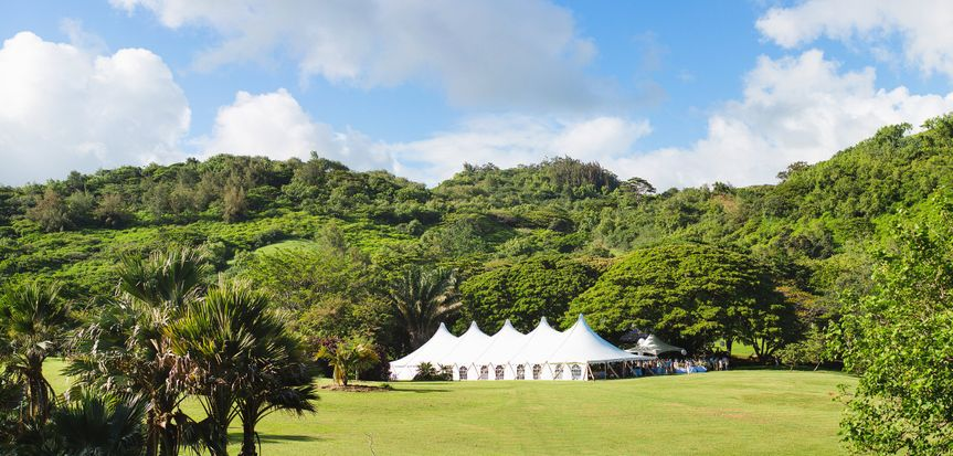 Greenery around the reception tent