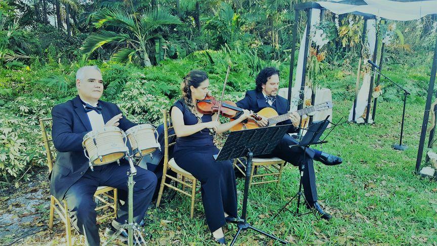 Unique trio for ceremony