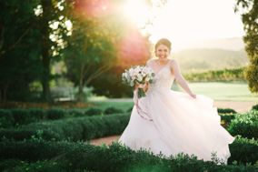Bethany Snyder Photography