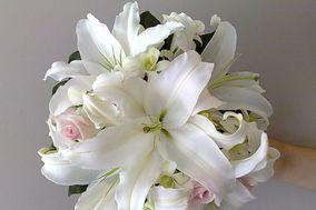 Floral Fantasy Florist