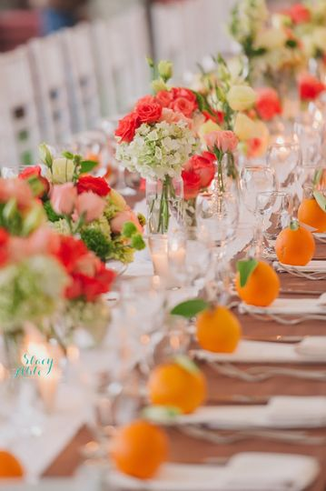 stacy able photography photography indianapolis in weddingwire