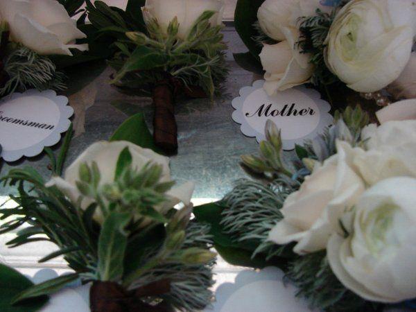 Tmx 1276600707217 DSC06726 New Freedom wedding planner