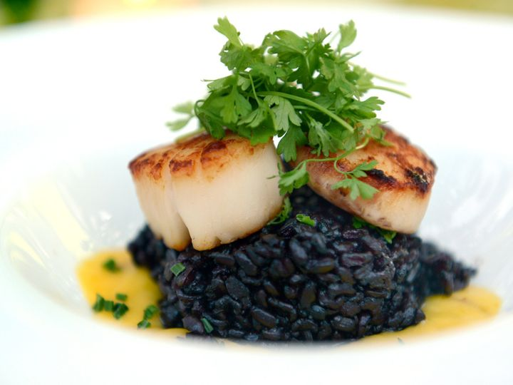 Tmx 1489507008775 Plated Scallop Forbidden Rice Altamonte Springs wedding catering