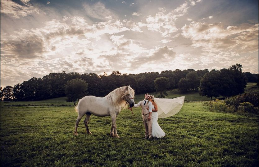 Bride & Groom with our horse
