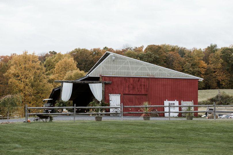 Outside our buffalo barn