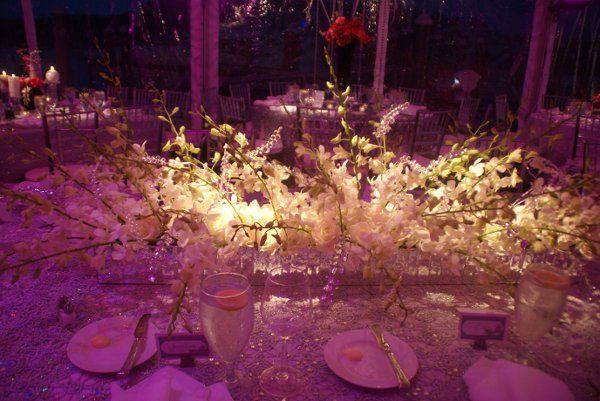 Tmx 1333148926808 DSC05910 Williamsburg, VA wedding planner