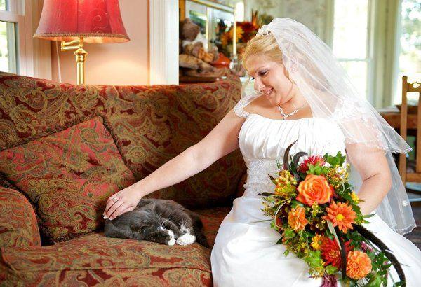 Tmx 1333155812029 393871101003183263584762550180046250884978587068n Williamsburg, VA wedding planner