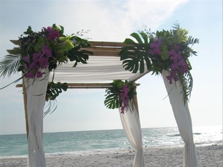 Tmx 1311807525617 IMG3845 Clearwater, Florida wedding florist