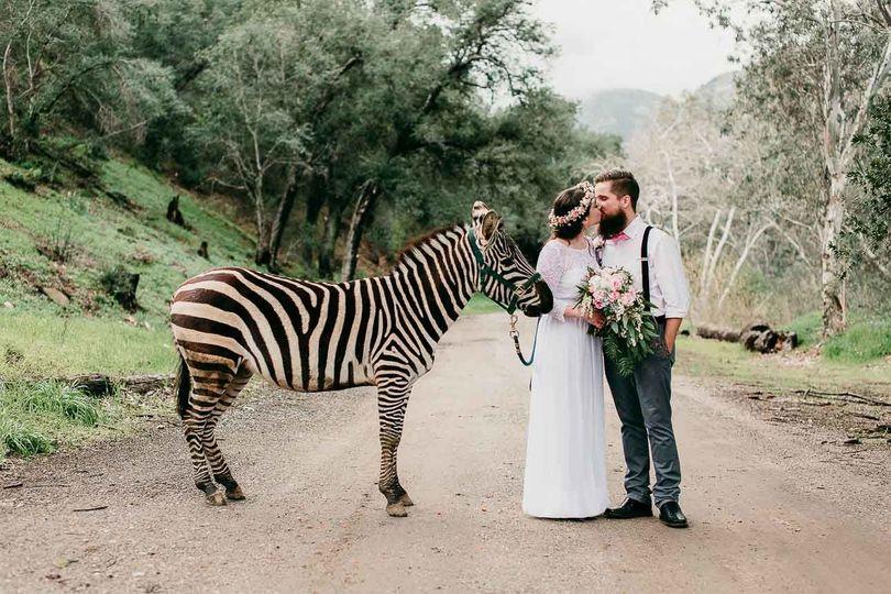 3e25fcc553cf8a17 wedding 1