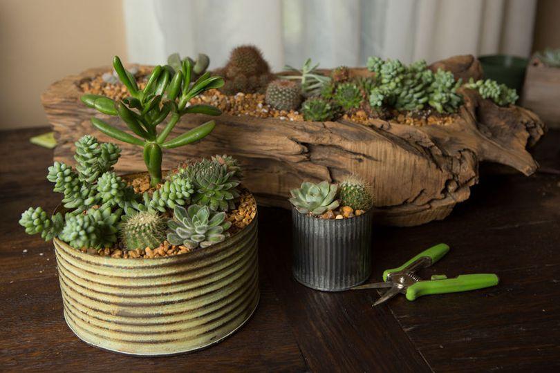 599686b6d4c407ac Flower Pot Gifts 4