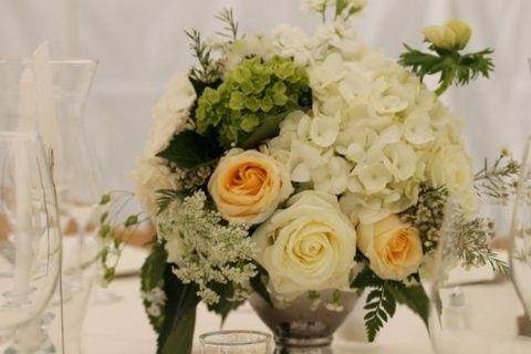 Tmx 1373456805097 Img0886 Fleischmanns wedding planner