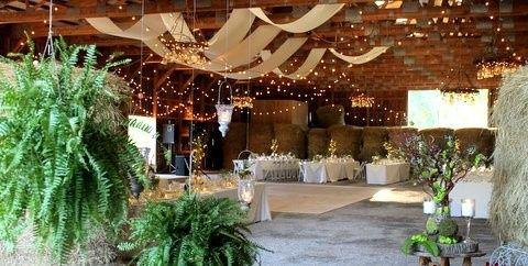 Tmx 1373457089531 Img0979 Fleischmanns wedding planner