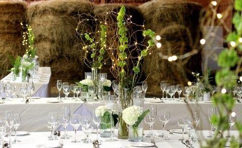 Tmx 1373457176549 Img0956 Fleischmanns wedding planner