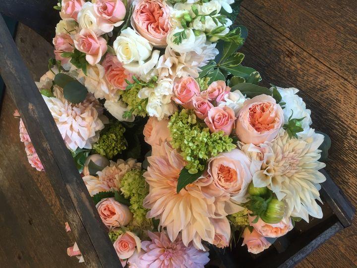 Tmx 1485635476163 Img3590 Jamestown, Rhode Island wedding florist