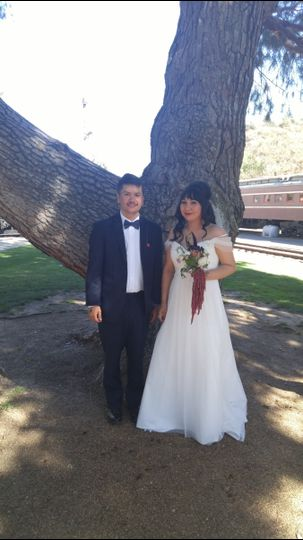 Bride and groom by the tree