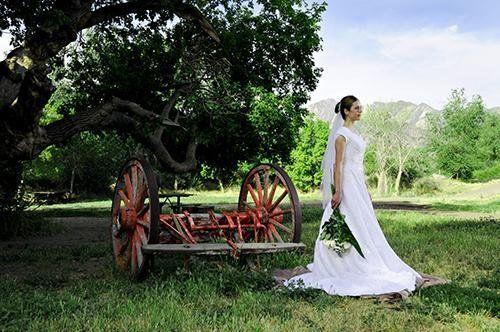 734de2f3a22a9d8c 1247687704493 bridal1