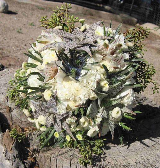 succulents carnations button mum