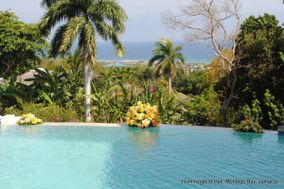 Hummingbird Hall Jamaica