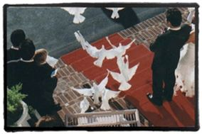 Whitebird Ceremonial Dove Releases