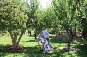 Jera Gardens