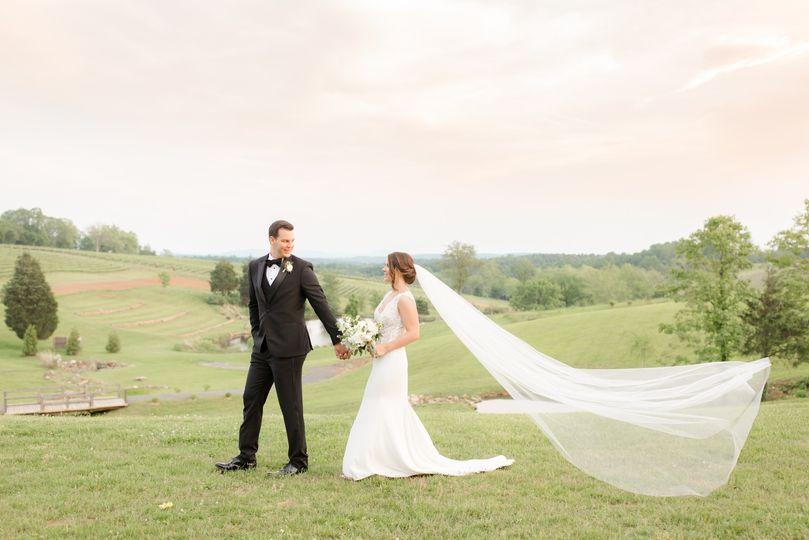 Vineyard wedding in Virginia