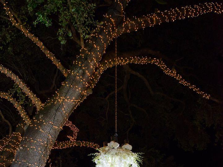 Tmx 1436200860312 Portraits 166 Orlando, FL wedding planner