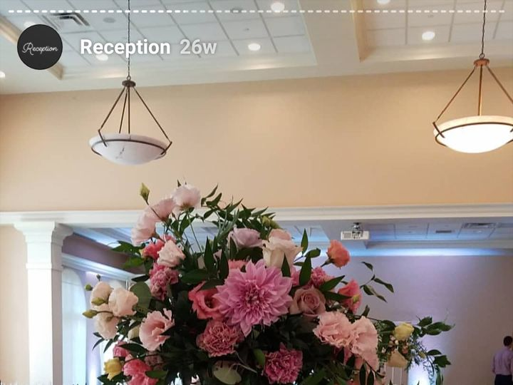 Tmx Screenshot 20190212 185541 Instagram 51 1057201 Grand Rapids, MI wedding florist