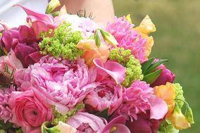 Dolce Floral Design