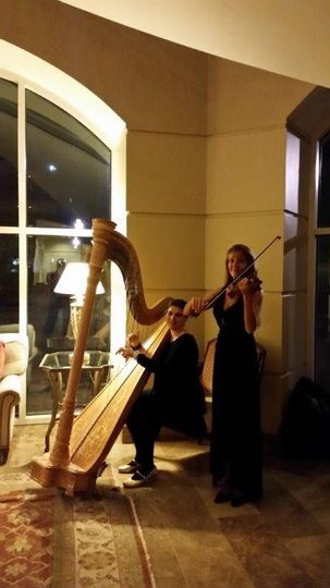 Harpist and violinist