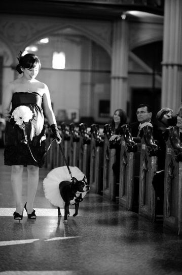 Matron of Honor and ring bearer - Photo by Brian Dorsey Studios