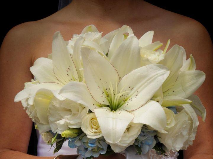 Tmx 1493068161126 4727793769079723286651855479984o North Tonawanda, NY wedding florist