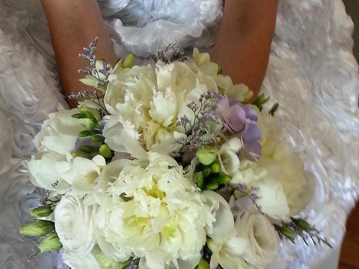 Tmx 20160622 142252 1 51 436301 160936086482969 North Tonawanda, NY wedding florist
