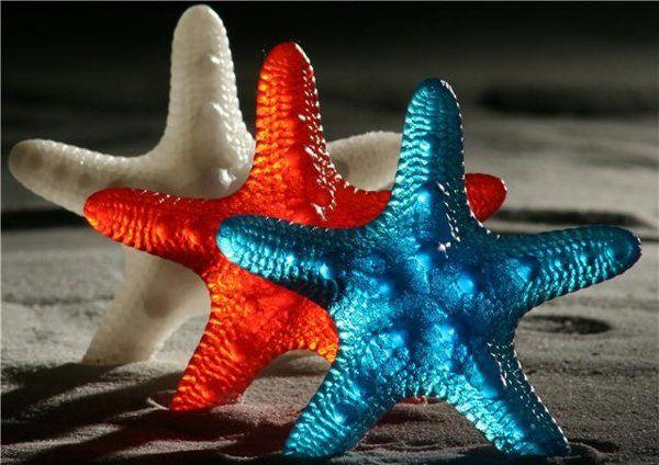 Large Starfish Soaps